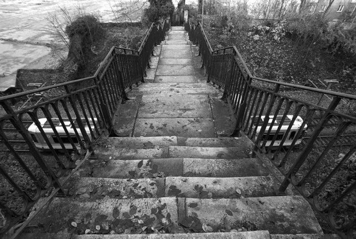 Escalier Meudon © Didier Raux 18