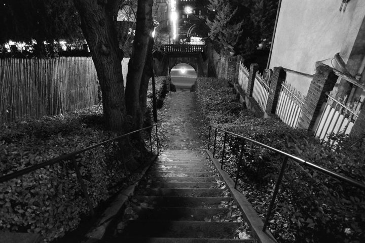 Escalier Sèvres © Didier Raux 7