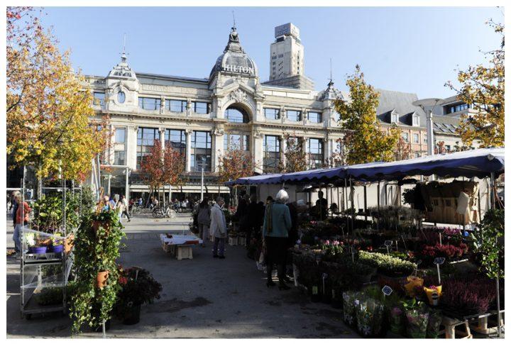 Anvers Belgique © D.Raux 18