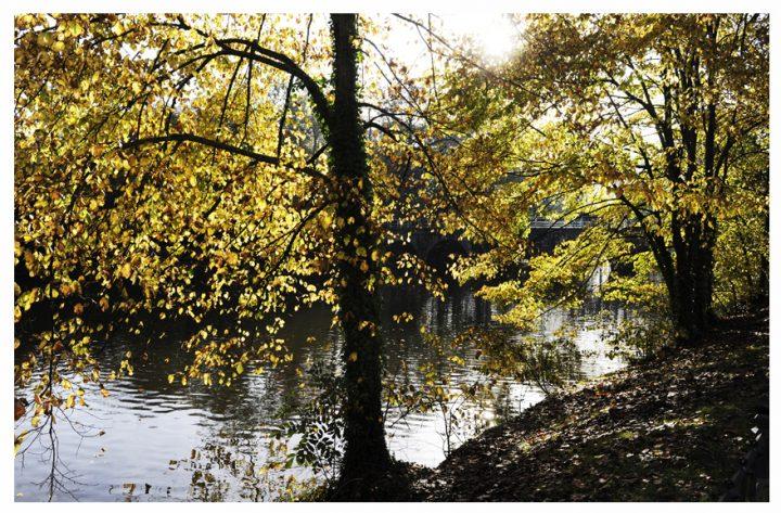 Bruges ©Photos D.Raux 19