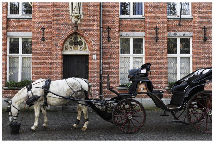 Bruges ©Photos D.Raux 27