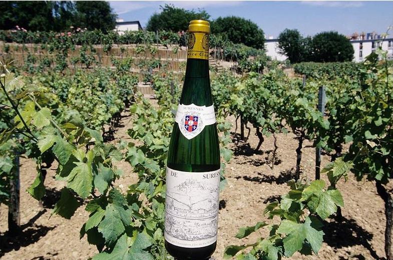 Les caves de cette propriété produit en moyenne cinq mille bouteilles de vin blanc par an.© Didier Raux