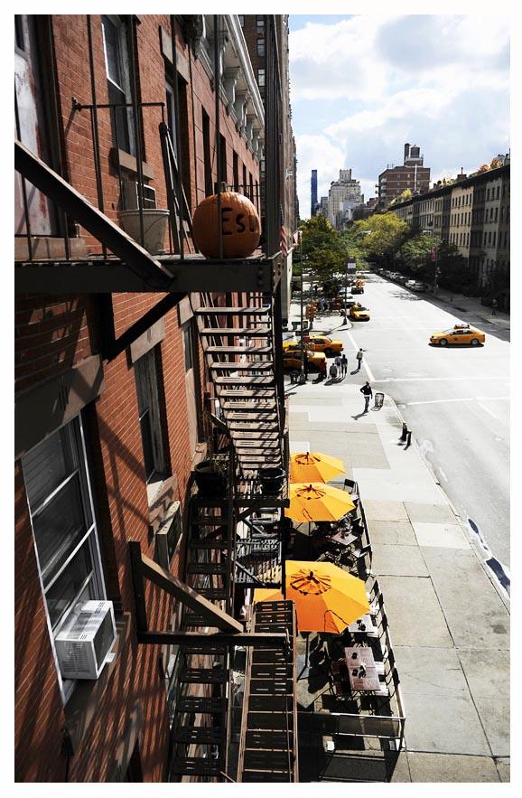 High Line New York © Didier Raux 21