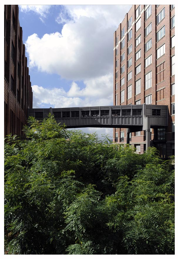 High Line New York © Didier Raux 28