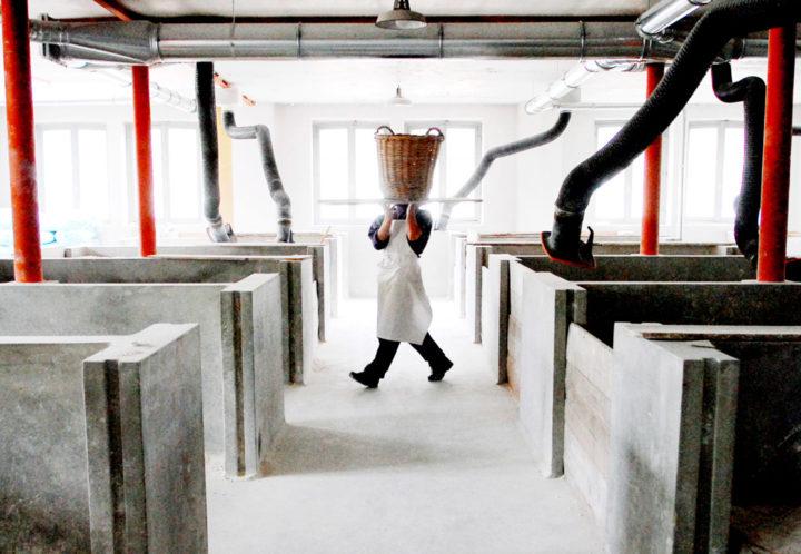 Manufacture de Sevres © Didier Raux 1