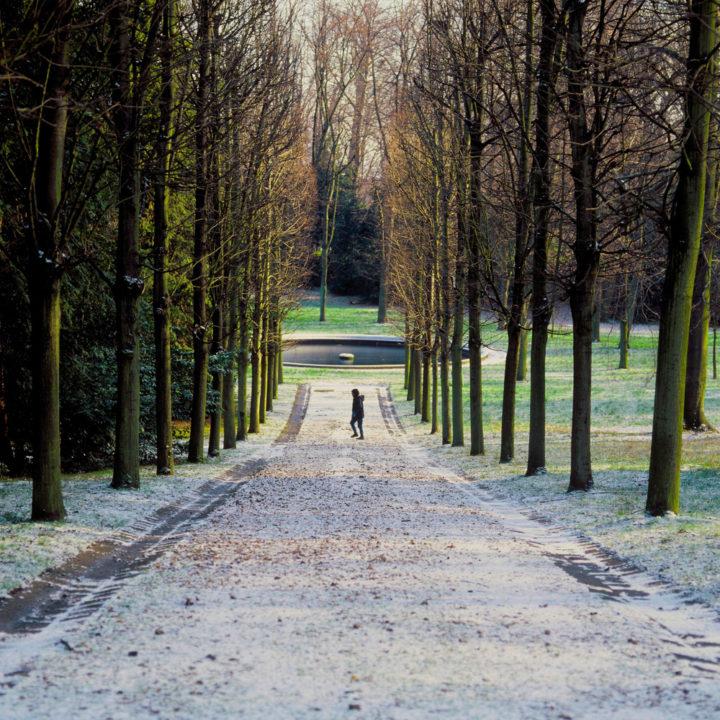 Parc Saint-Cloud © Didier Raux 14