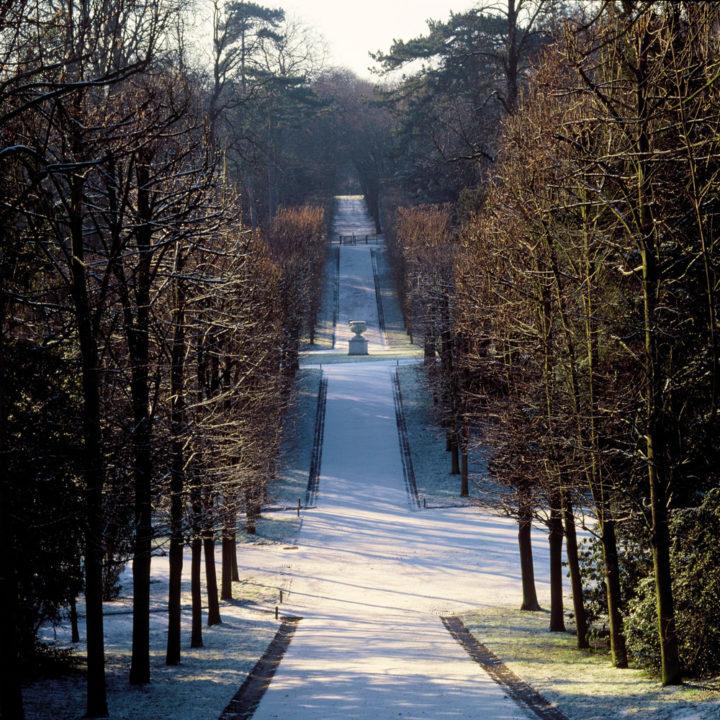 Parc Saint-Cloud © Didier Raux 15
