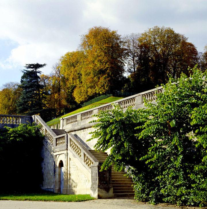 Parc Saint-Cloud © Didier Raux 31