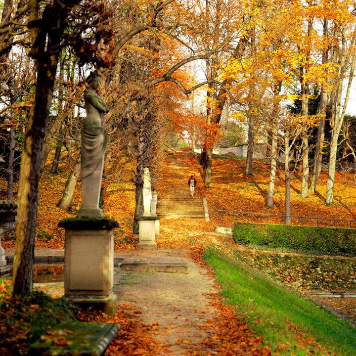 Parc Saint-Cloud © Didier Raux 7