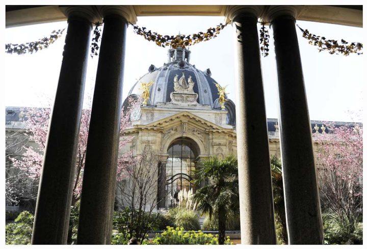 Petit Palais Paris © Didier Raux 11