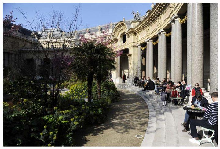Petit Palais Paris © Didier Raux 13
