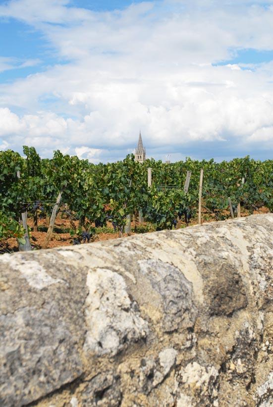 Saint-Emilion 16