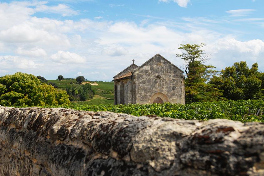 Le vignoble de Saint-Émilion © Didier Raux