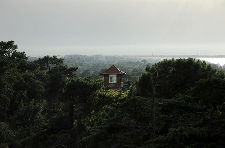 La tour de la villa ALEXANDRE DUMAS  perdue dans les arbres, avec vue sur le bassin. © Photo Didier Raux