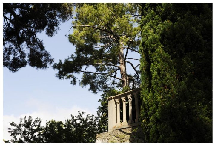 Villa jardins Ephrussi de Rothschild © D Raux 9