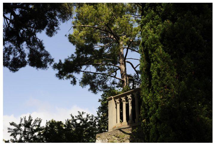 Villa & jardins Ephrussi de Rothschild 9