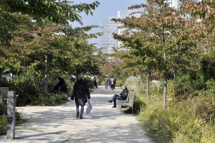 2016 Parc de Billancourt © D Raux 114
