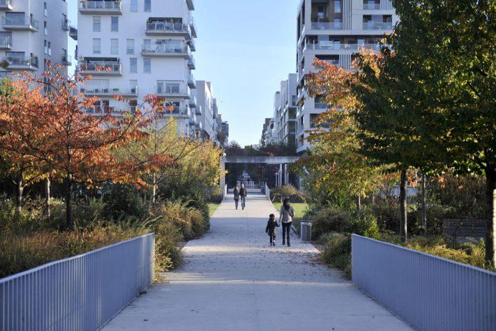 2016 Parc de Billancourt © D Raux 50