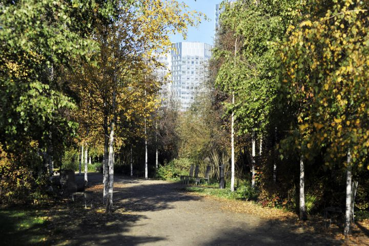 2016 Parc de Billancourt © D Raux 88