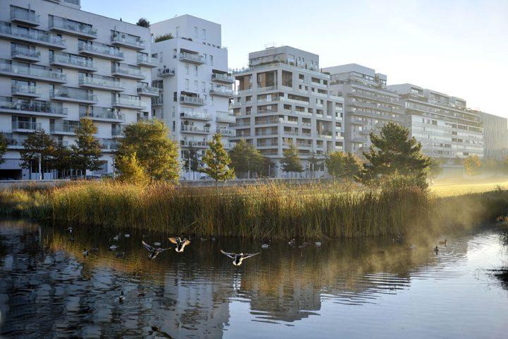 2016 Parc de Billancourt © D Raux 9