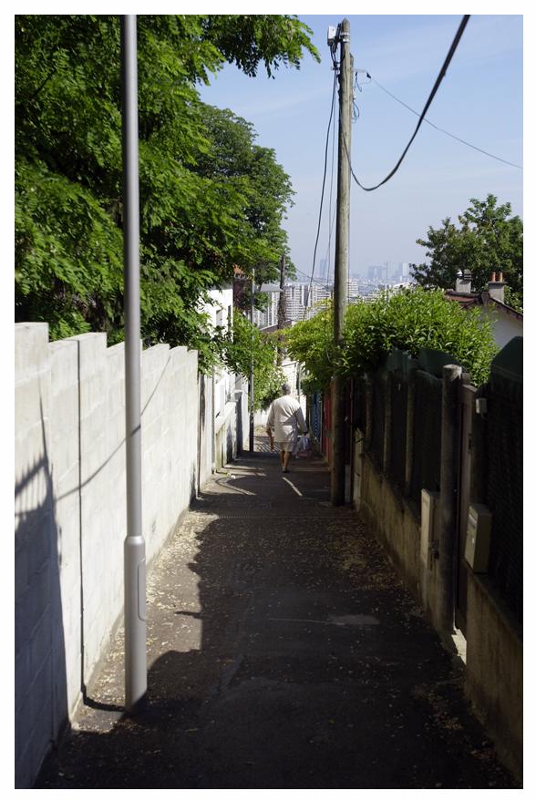 Sentier des Renaults 6