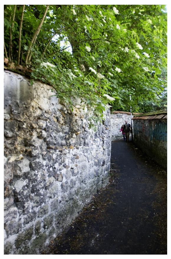 Sentier des Voisinoux 12