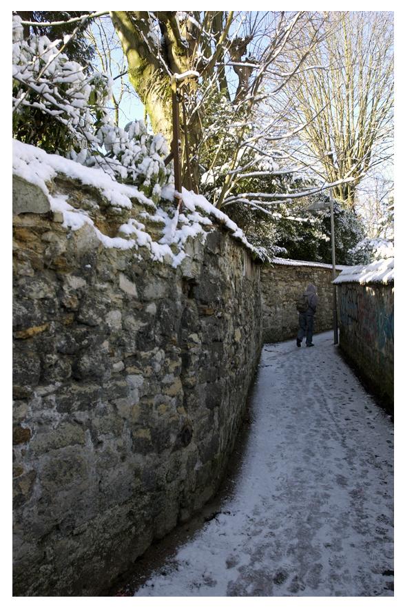 Sentier des Voisinoux 15
