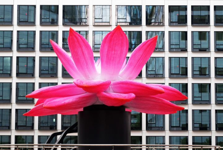 Choi Jeong Hwa – Breathing Flower, 2019