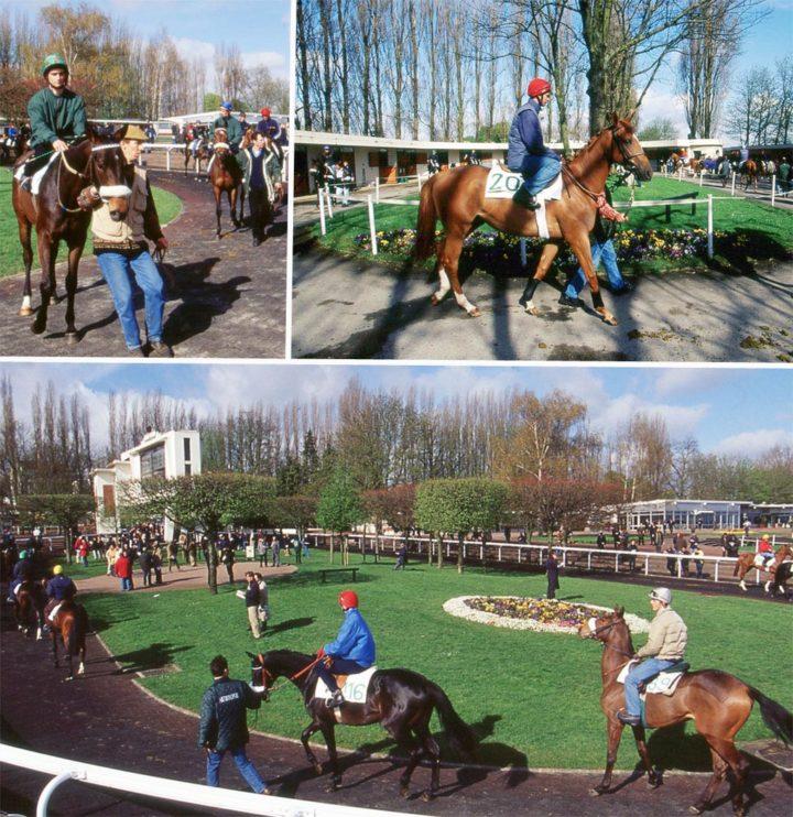 1 Saint Cloud Ventes de chevaux Goffs © D Raux 20