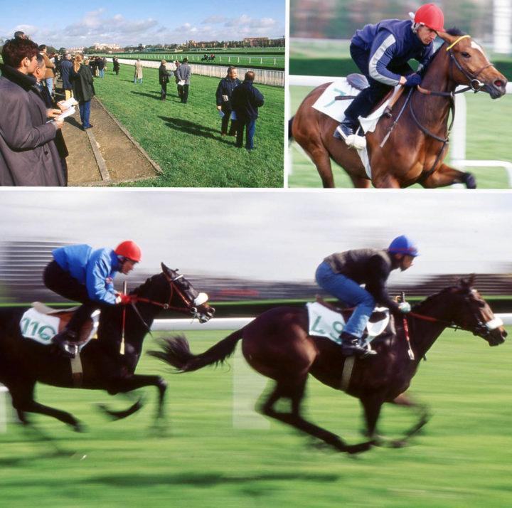 3 Saint Cloud Ventes de chevaux Goffs © D Raux 20