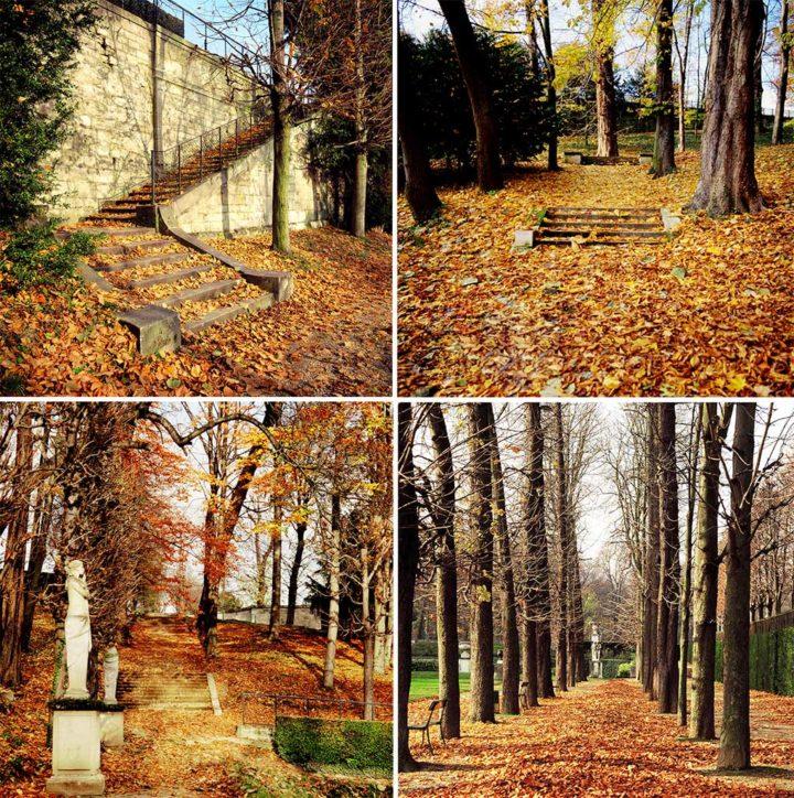Parc Saint-Cloud © Didier Raux 1G