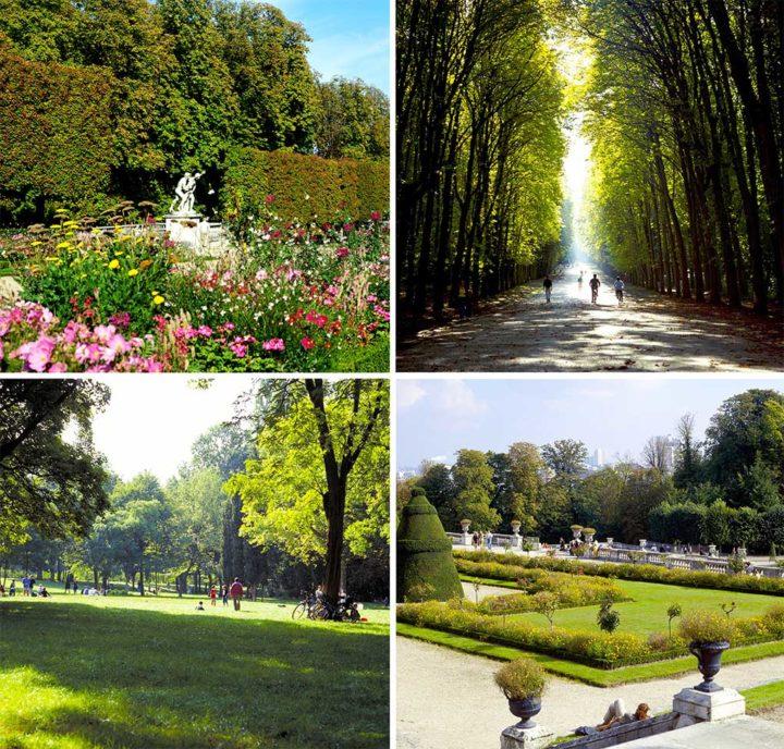 Parc Saint-Cloud © Didier Raux 1K