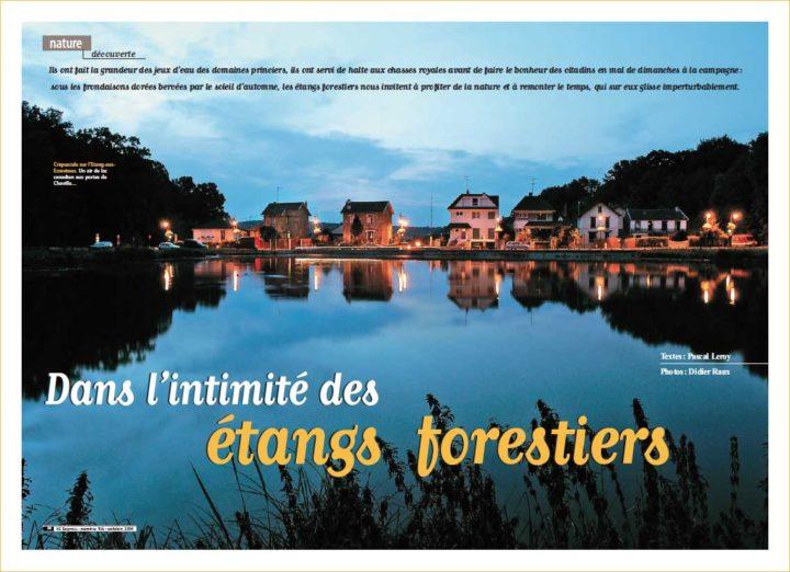 Etangs forestier © Didier Raux 20