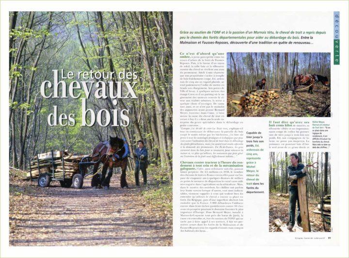 Chevaux des Bois © Didier Raux 3